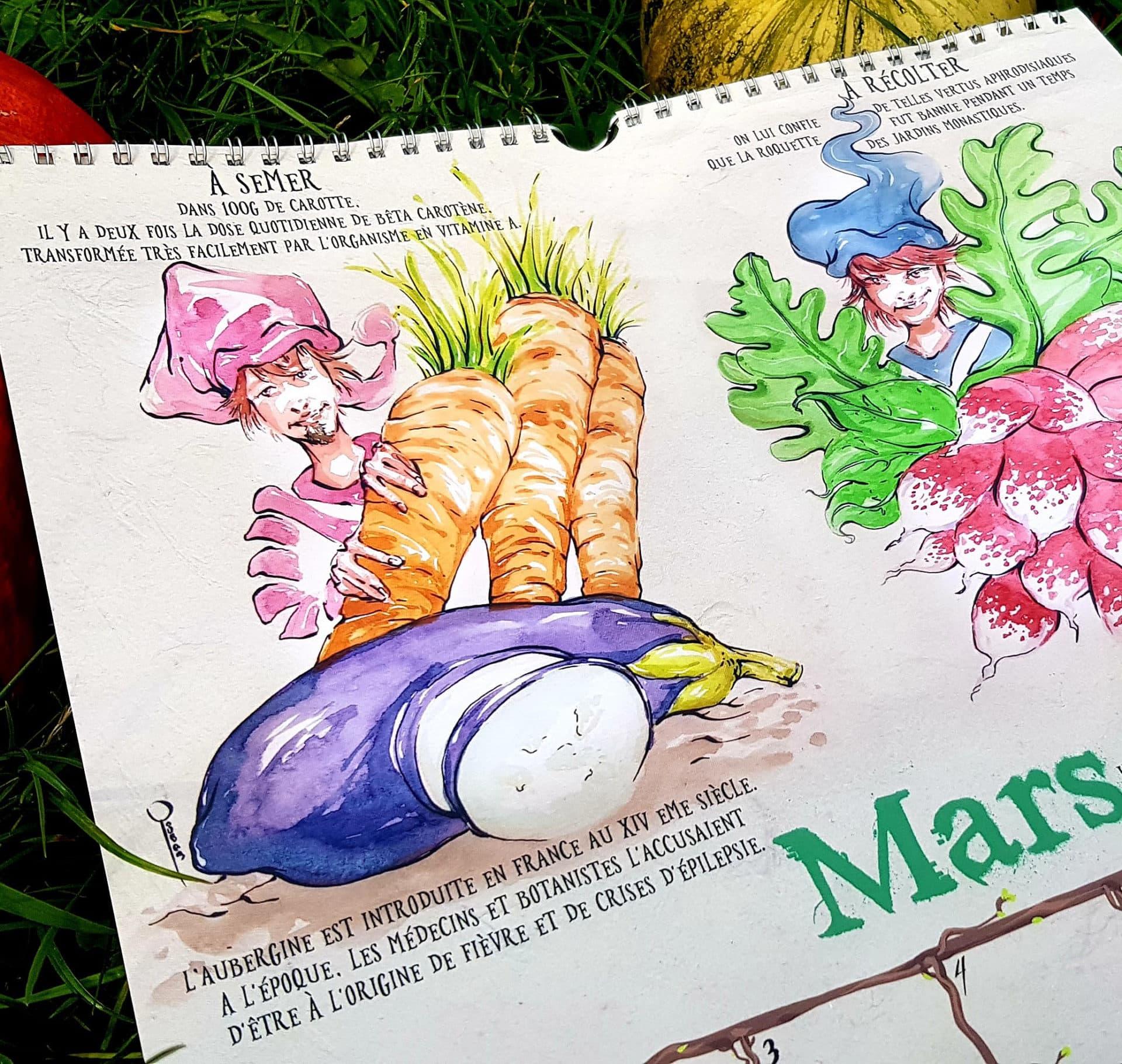 Calendrier du potager - mars