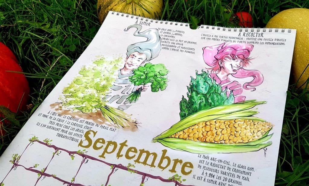 calendrier du potager septembre